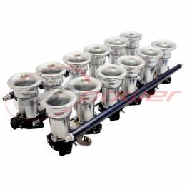 DCOE 12-Cylinder Electronic Fuel Injection (EFI) Throttle Bodies (ITB's)